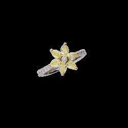 Ring A10325/YW-WY
