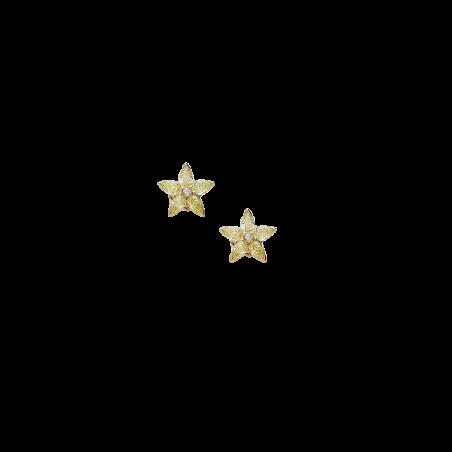 Orecchini B10309/YW-Y